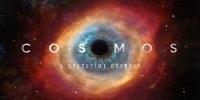 Cosmos : Une odyssée à travers l'univers (Cosmos: A Spacetime Odyssey)