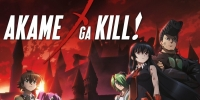 Red Eyes Sword: Akame ga Kill (Akame ga Kill!)