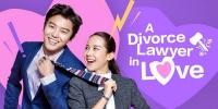 A Divorce Lawyer in Love (Yhonbyeonhosaneun yeonae jung)