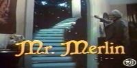 Monsieur Merlin (Mr. Merlin)