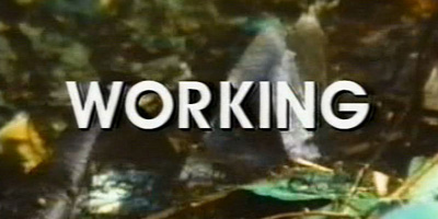 Working (1997)