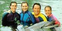 Les nouvelles aventures de Flipper le dauphin (Flipper: The New Adventures)