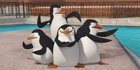 Les Pingouins de Madagascar (The Penguins of Madagascar)
