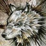 avatar Dans-la Tête Du-Loup