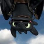 avatar Toothless