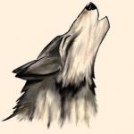 avatar zoeoz