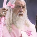 avatar Gandalf-le-rose