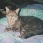 avatar Delphine