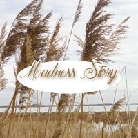 avatar madness-story