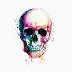 avatar Scribe