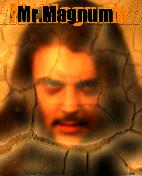 avatar Mr.Magnum