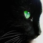avatar Agat83