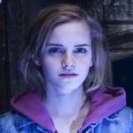 avatar MyriamBrownie